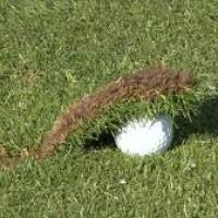 Fat Golf Shot - Stop